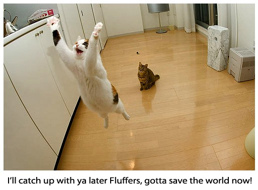 Funny Supercat Going to Save the World width=
