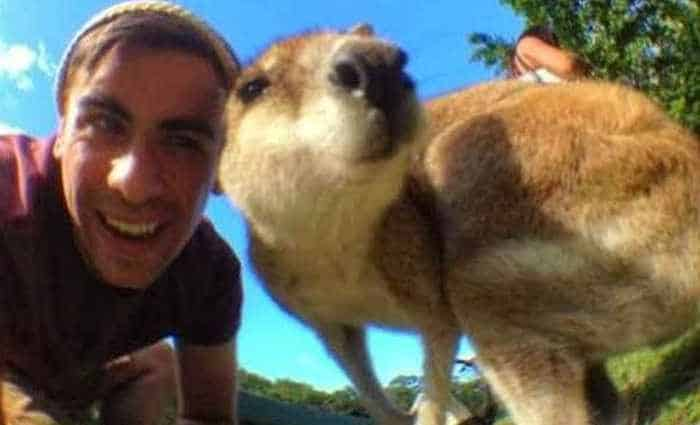 51 Animals Who Don't Want to Be A Part of Your Ridiculous Selfie -04