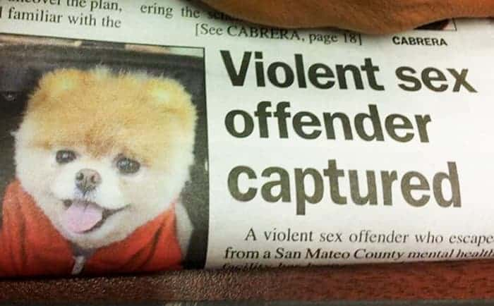 56 Awkward Newspaper And Magazine Layout Disasters Ever -10