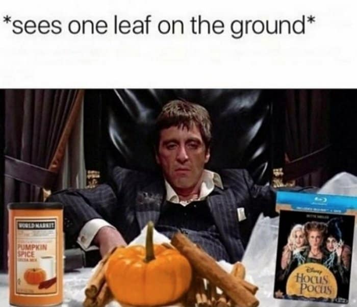 24 Best Halloween Memes That Are Awesome -12