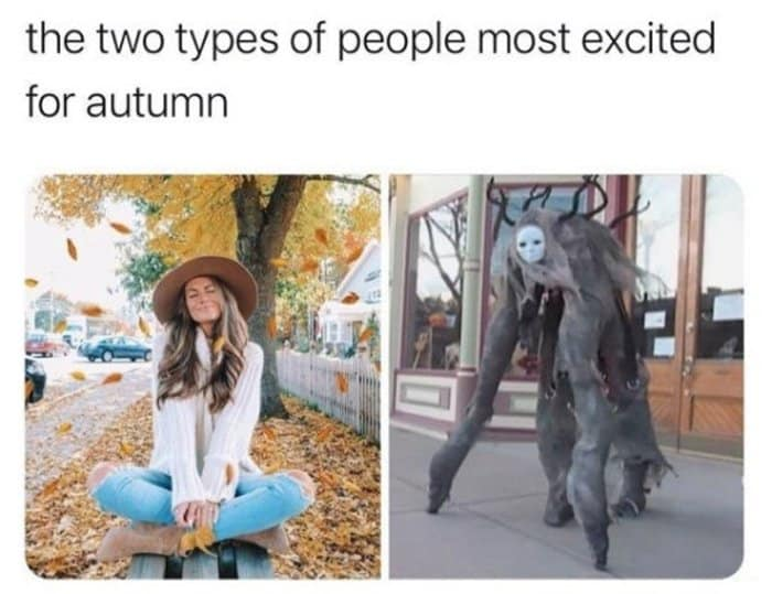 24 Best Halloween Memes That Are Awesome -13