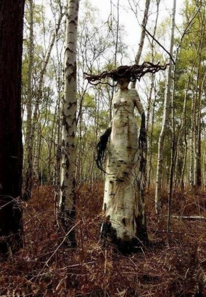 72 Best NOPE Images That Will Shock You-69