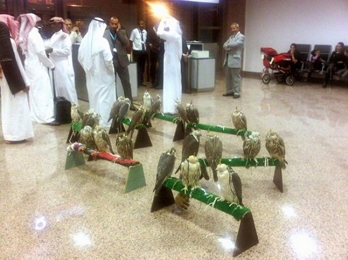Most Bizarre Things Spotted At The Airport (55 Pics)-24