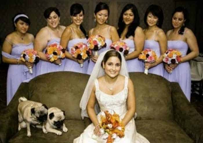 44 Funny Epic Fail Wedding Pictures That Will Make You Laugh -34