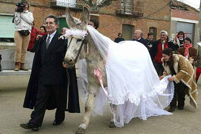 44 Funny Epic Fail Wedding Pictures That Will Make You Laugh -40