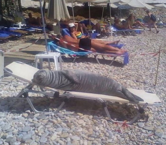 34 Funniest Beach Photos That Are Too Awkward To Handle-17