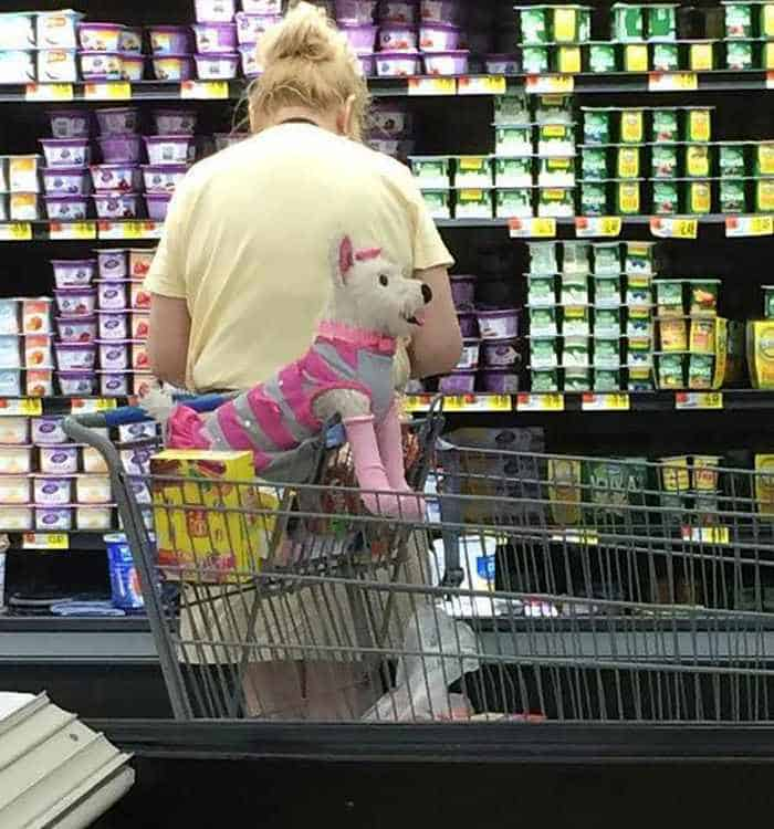 The 45 Funniest People of Walmart Photos -42