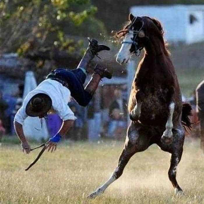 A Funny Day In Life That Will Make You Smile - 16 Pics -03