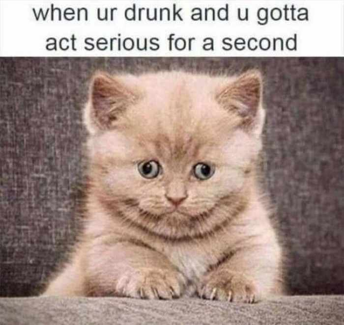 Funny Drinking Memes That Will Make You ROFL (35 Photos)-08