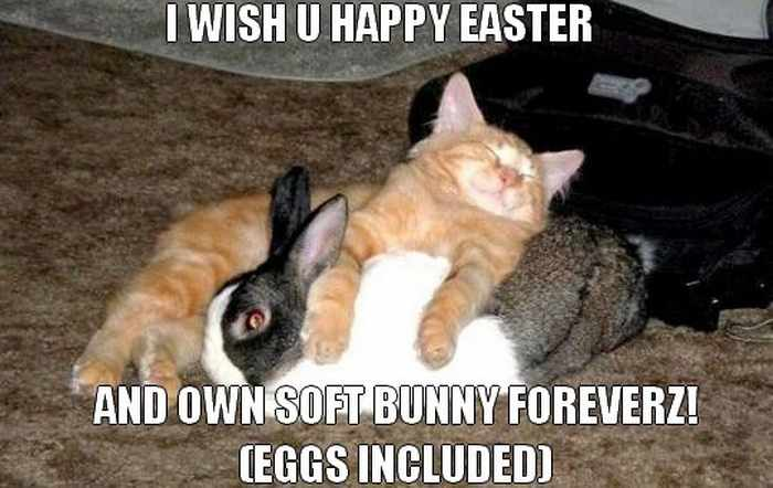 52 Funny Easter Memes That Will Make Your Holiday -06