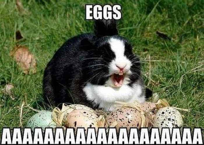 Funny Easter Memes That Will Make Your Holiday - 52 Pics -24