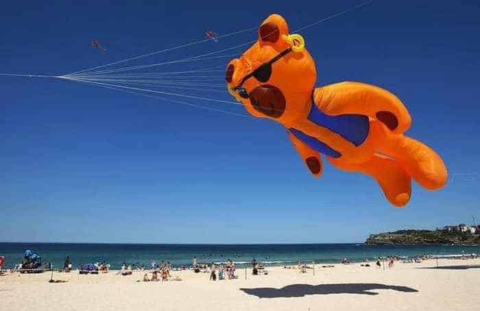 9 Awesome Pics Of Funny Air Festival In Australia -02
