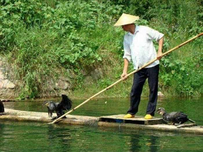How to Fish : 9 Funny Pics of Unusual Funny Fishing -07