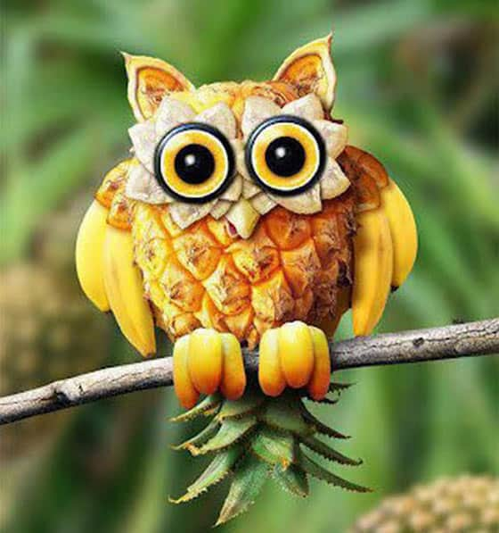 11 Pics of Funny Animals With The Help Of Creative Food Art -09