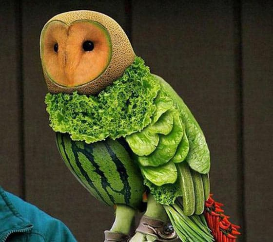 11 Pics of Funny Animals With The Help Of Creative Food Art -10