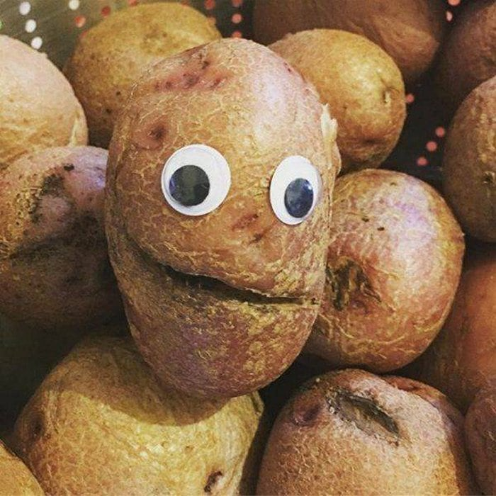 Funny Googly Eyes That Make Things Funnier (70 Pics)-41