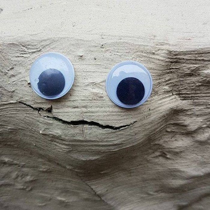 Funny Googly Eyes That Make Things Funnier (70 Pics)-44