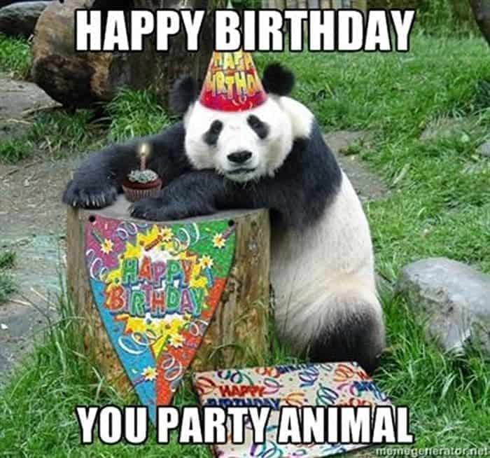 60 Funny Happy Birthday Memes of The Day For Your Loving One -18