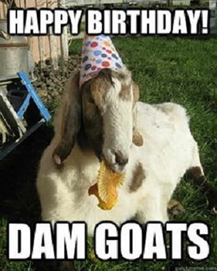 60 Funny Happy Birthday Memes of The Day For Your Loving One -22