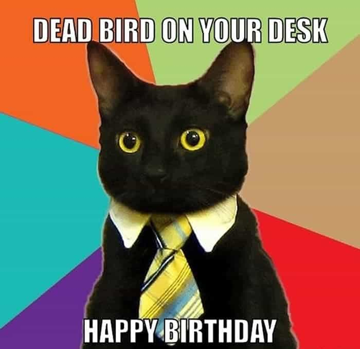 60 Funny Happy Birthday Memes of The Day For Your Loving One -23