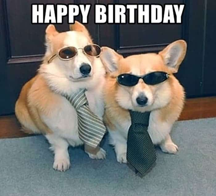 60 Funny Happy Birthday Memes of The Day For Your Loving One -29
