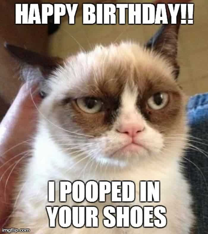 60 Funny Happy Birthday Memes of The Day For Your Loving One -30
