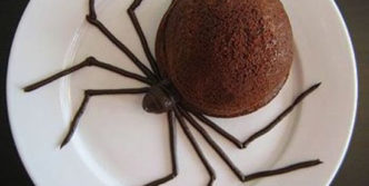 Funny Chocolate Spider Ice Cream That Kids Don't Like