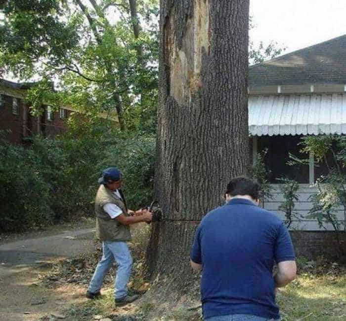 Awesome Epic Fail Funny Lumberjacks - 5 Photos -01