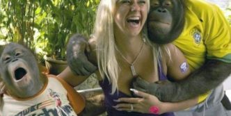 Monkey Also Likes To Enjoy – Funny Monkeys With Lady