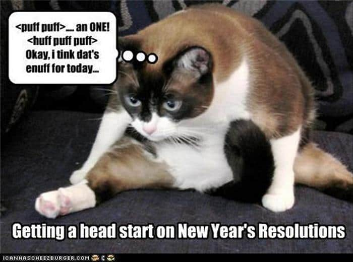 Funny New Year Wishes, Quotes, Pictures and Resolutions - 45 Pics -36