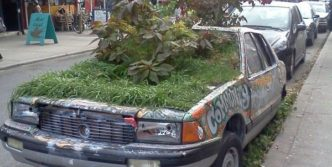 Unusual Car Garden Will Blow Your Mind