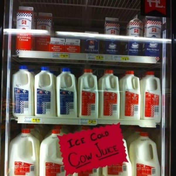 Ice Cold Cow Juice That You Don't Like to Buy