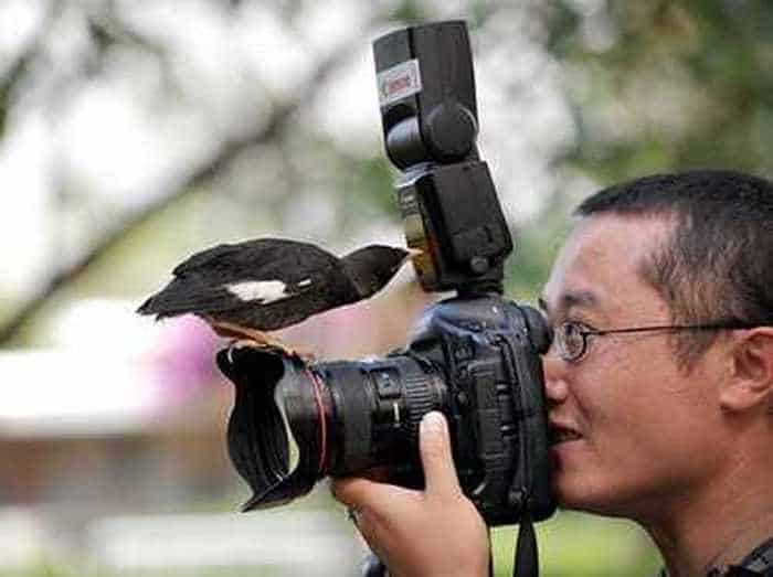 30 Funny Pictures of The Year That Will Blow Your Mind -02