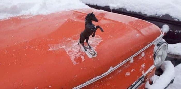 50 Funny Pictures That You Can Only See in Russia -07