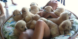 Who Is Lucky – Puppies Or Girl?
