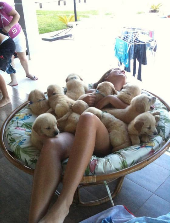 Who Is Lucky - Puppies Or Girl?