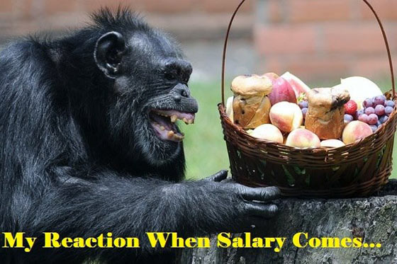 Meanwhile Reaction When Salary Comes Will Blow Your Mind