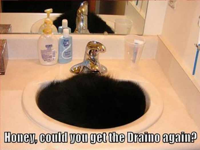 30 Funny Sink Pictures That Will Make Your Day - 30 Photos -07