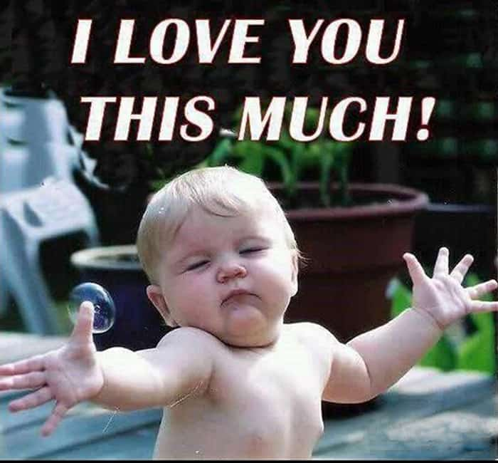 funny valentines day pictures I love you this much