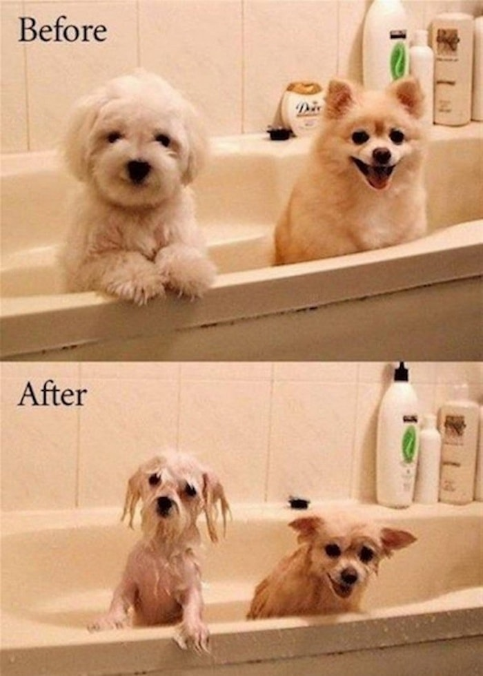 32 Hilarious Before And After Pictures That Will Blow You Away-17