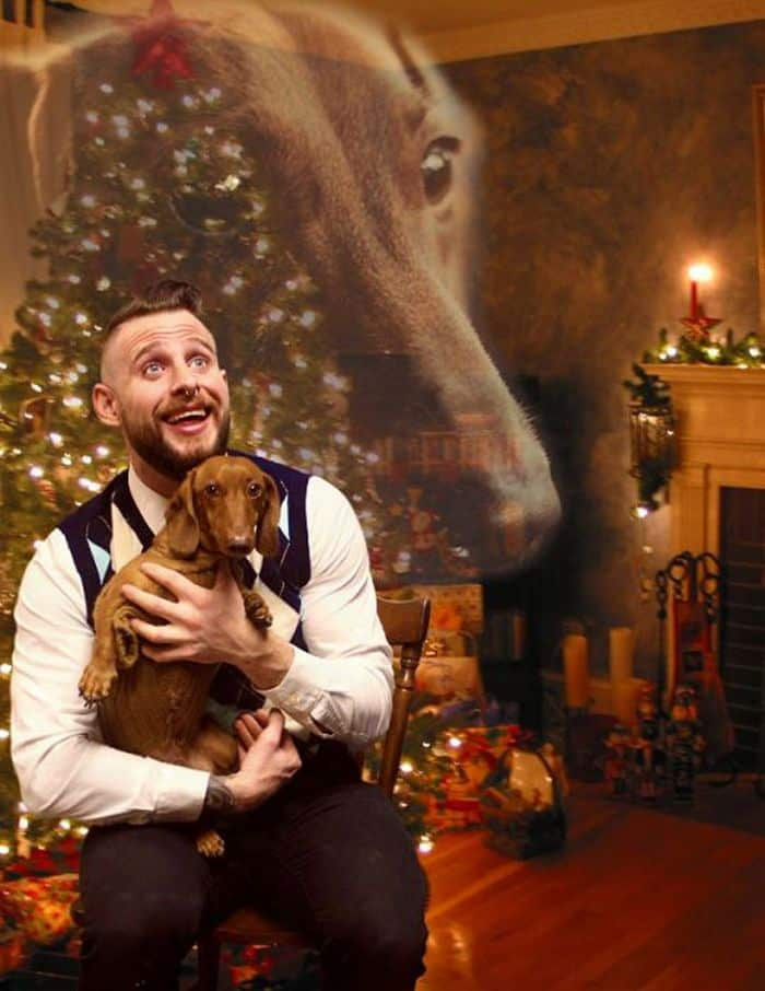 20 Hilarious Christmas Portraits With Pets That Will Make Your Day -04