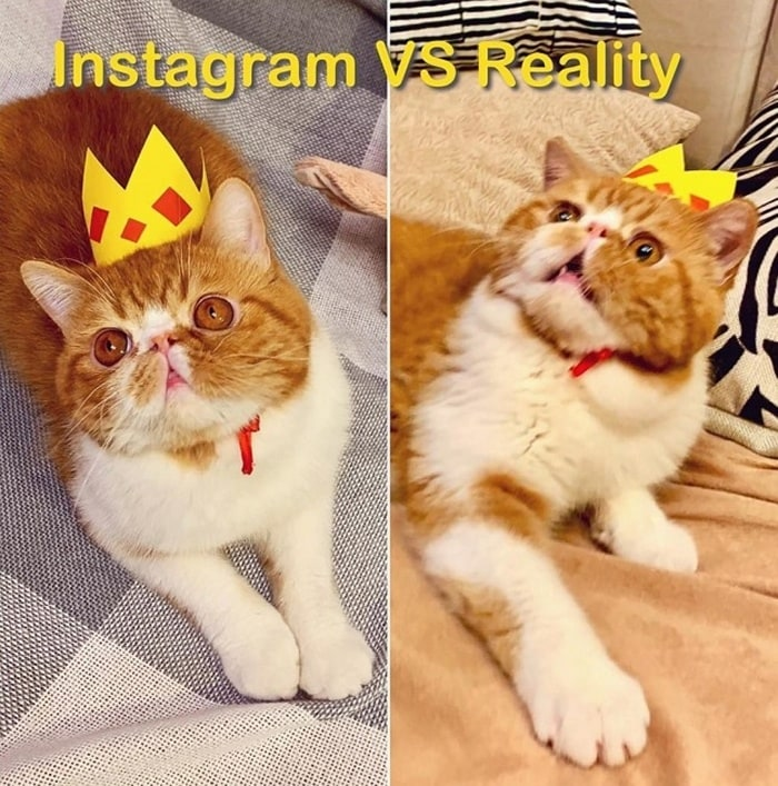 Instagram Vs Reality Photos That Will Shock You (19 Pics)-16
