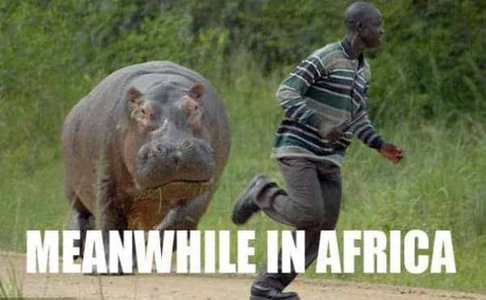 Meanwhile in Africa - 34 Funny Pictures -10