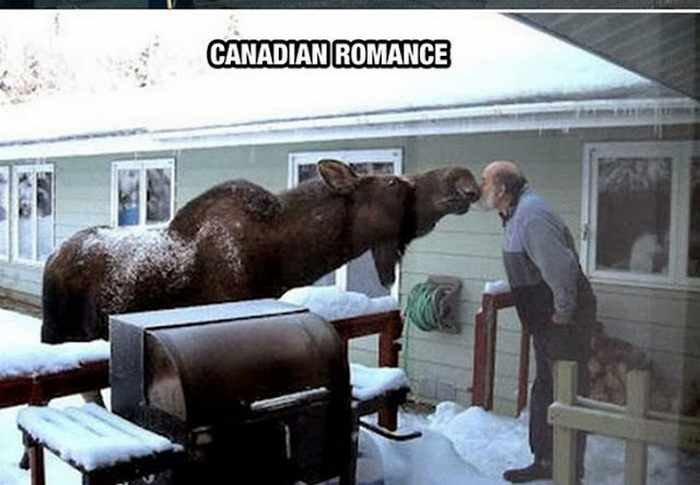 40 Meanwhile In Canada Photos That Will Blow Your Mind -06