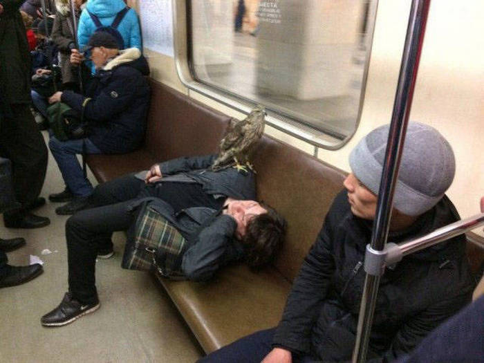 35 Meanwhile In Russia Photos That Will Blow Your Mind-18