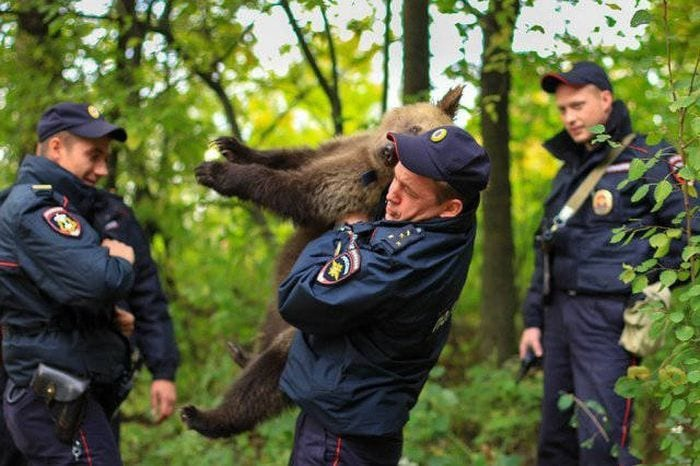 65+ Only In Russia Photos That Will Force You To Say WTF-32