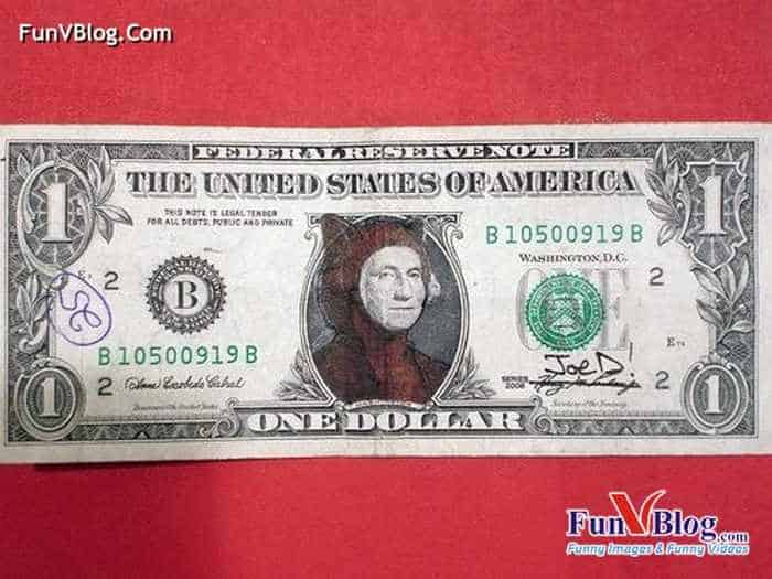Hilarious And Funny Painted Dollars - 11 Pics -11