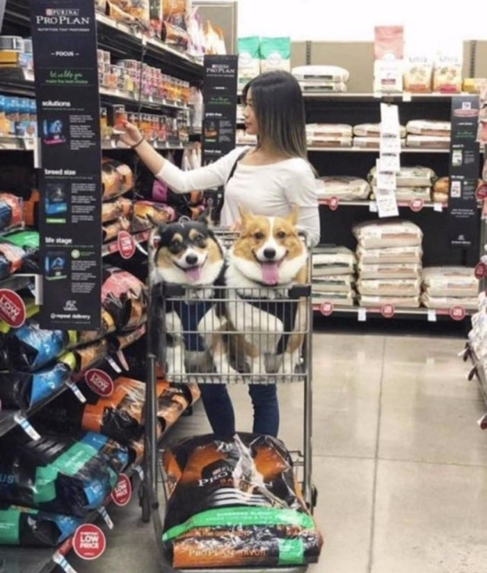 People Of Walmart That Are Too Ridiculous To Handle (100+ Pics)-104