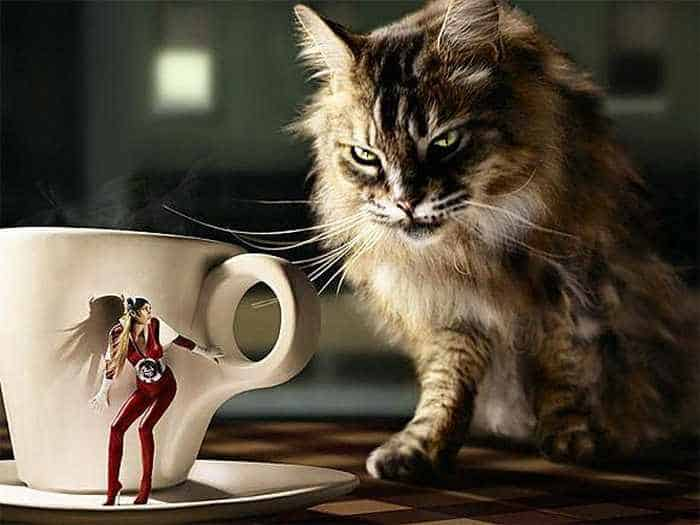 Top 44 Funny Photoshop Manipulation Images -02
