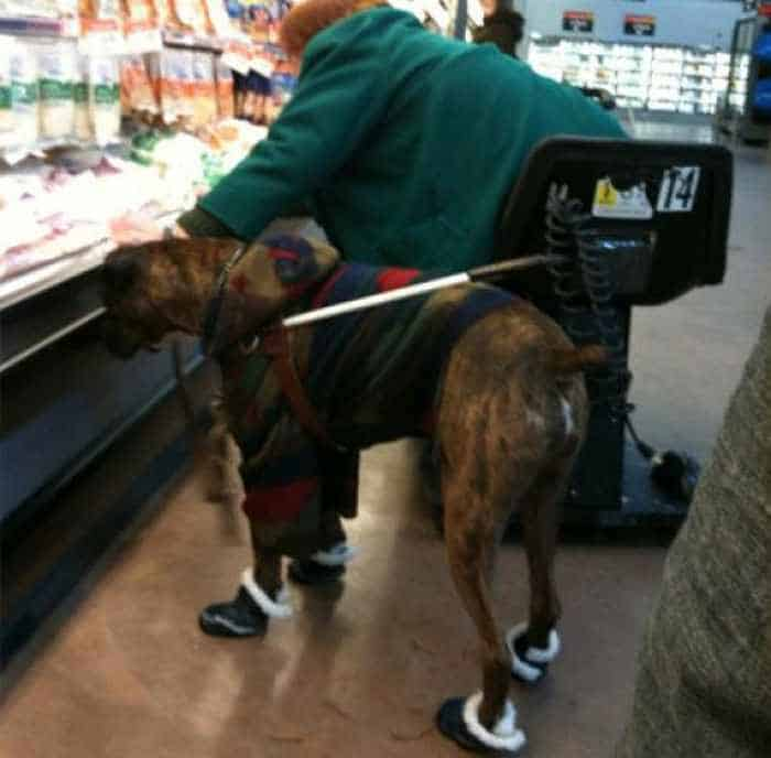 Most Ridiculous People Of Wal-Mart - 55 Pics -12